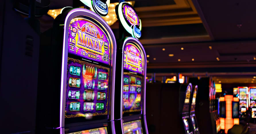 Какво трябва да знаете за Play'n Go Money Въртене на нови слотове - Заек Дупка богатства